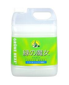 【業務用・キッチン洗剤】緑の魔女 キッチン 業務用 5L ( 食器用洗剤 ) 弱酸性 大容量サイズ( 4902875981124 )