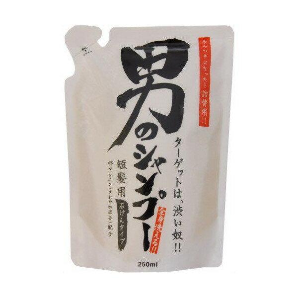 地の塩社 ちのしお 男のシャンプー 詰替用 250mL ( 全身洗える男性向けシャンプー 詰替え ) ( 4982757913429 )