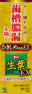 EX leaves 100 g pharmaceutical products (gum disease tooth toothbrush) × 5pcs (4987072038826)
