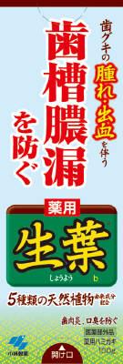 小林製薬生葉(しょうよう)b100g