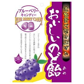 【送料無料・まとめ買い×10】日進医療器 おいしいのど飴 ブルーベリー 70g