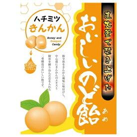 【送料無料・まとめ買い×10】日進医療器 おいしいのど飴 ハチミツきんかん 70g
