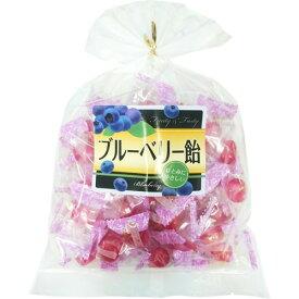 【送料無料・まとめ買い×10】日進医療器 おいしいのど飴 ブルーベリー 210g