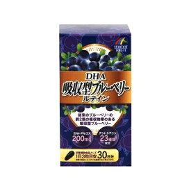 【送料込・まとめ買い×5】ユニマットリケン DHA 吸収型 ブルーベリールテイン 90粒入