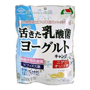 【送料込・まとめ買い×48個セット】佐久間製菓 活きた乳酸菌 ヨーグルトキャンディ 90g