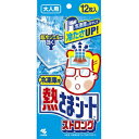 【週末限定セール】 小林製薬 冷凍庫用 熱さまシート ストロング 大人用 12枚入 (4987072048986)