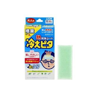 냉기 피타 어른용 8시간 12+4장