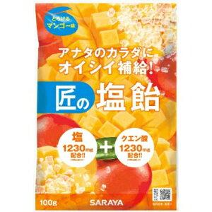 【送料込・まとめ買い×20個セット】サラヤ 匠の塩飴 マンゴー味 100g 1個