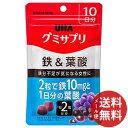 【メール便送料無料】UHA味覚糖 グミサプリ 鉄&葉酸 10日分 20粒入 1個