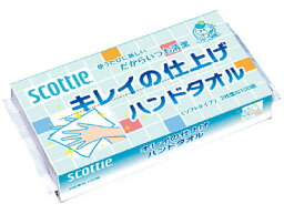 斯科蒂漂亮的完成手毛巾100