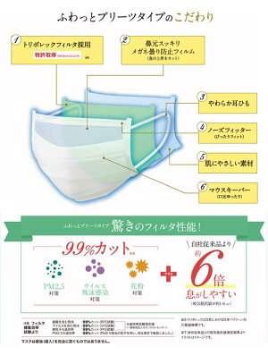 日本バイリーンフルシャットマスクふわっとプリーツタイプふつうサイズ5枚入り1個
