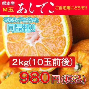 デコポン/でこぽん/不知火/熊本県/熊本県産 あしでこ2kg【M玉】