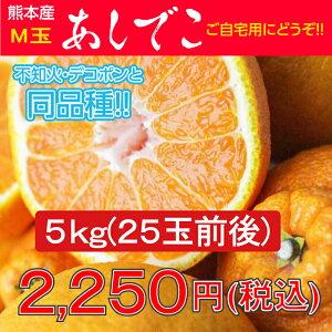 デコポン/でこぽん/不知火/熊本県/熊本県産 あしでこ5kg【M玉】