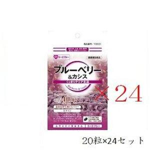 (セット)エーエフシー 500円シリーズ ブルーベリー+カシス 20粒×24セット