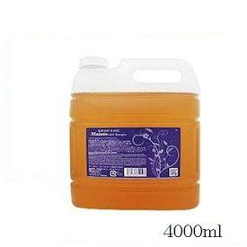 HAHONICO ハホニコ キラメラメ メンテケア シャンプー 4000ml 順次リニューアル品となります。