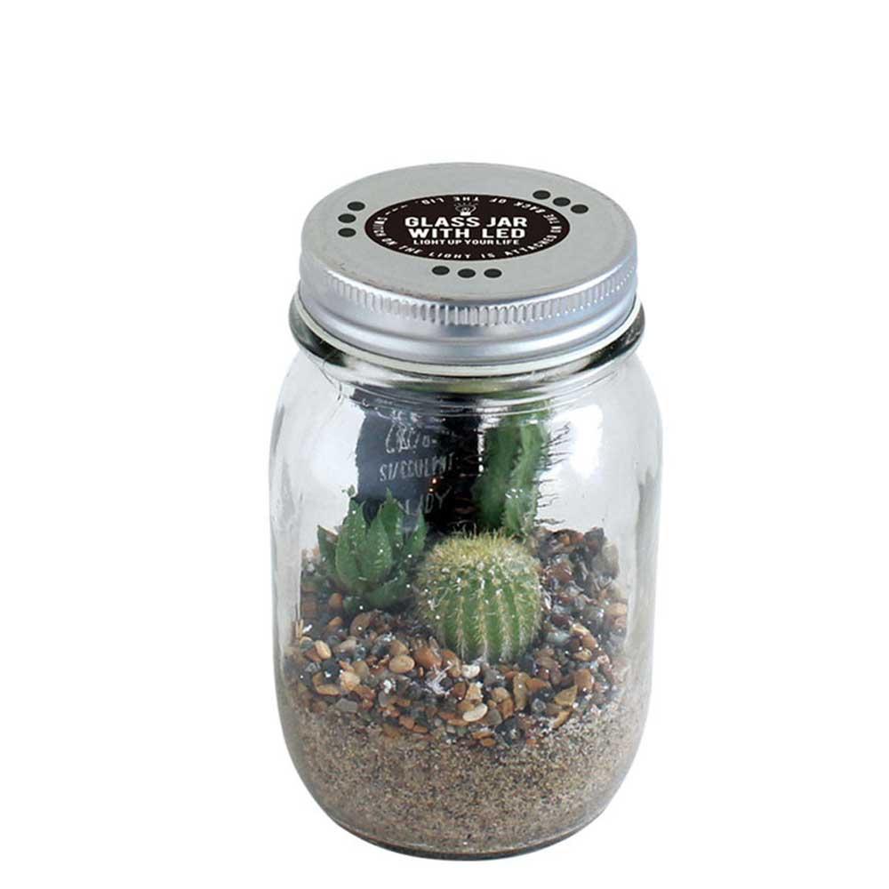 サボテン入り LEDライト付ガラスジャー スパイス GLASS JAR WITH LED SABOTEN Sサイズ