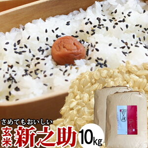 令和元年産 新米 玄米 新之助 10kg 新潟米 お米 米 新潟県産【送料無料】