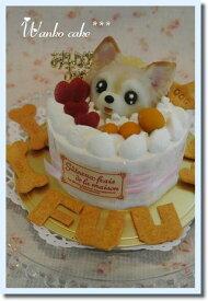 ワンコケーキ*フルーツデコレーションケーキ*S(犬用ケーキ・犬ケーキ・誕生日)