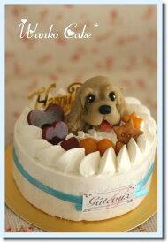 ワンコケーキ*フルーツデコレーションケーキ*M(犬用ケーキ・犬ケーキ・誕生日)