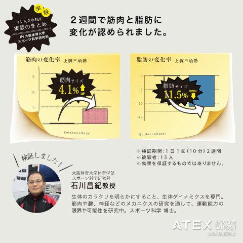 【送料無料】ルルドシェイプアップリボンAX-KXL5200EMSエクササイズ&ストレッチアテックスATEX※沖縄・離島追加請求あり