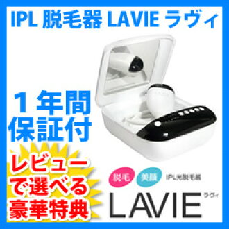 IPL 제 모 체 라비 탈모 LAVIE 벌 거 벗은 아름다움 얼굴 장비
