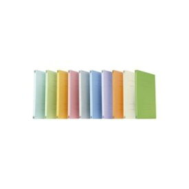 (業務用2セット) プラス フラットファイル/紙バインダー 【A4/2穴 30冊】 021N オレンジ