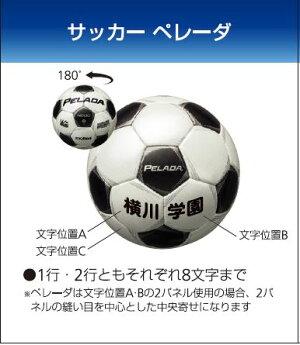 モルテンmoltenサッカーペレーダ4000土用4号球シャンパンシルバー×メタリックブラック検定球F4P4000