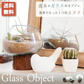 オブジェ インテリア 木 木製 流木 枝 雑貨 インテリア雑貨 水槽 アクアリウム 小物収納 ディスプレイ 置型 ガラス 北欧 おしゃれ
