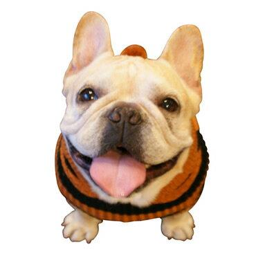 フード付きボーダー ニット /第六弾:ブラウン×ブラック 犬 服 【犬