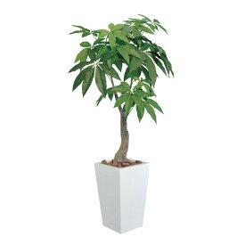 光触媒 観葉植物 インテリア 人工植物 フェイクグリーン アートグリーン 造花 グリーン 人工観葉植物 おしゃれ 玄関 オフィス 贈り物 ディスプレイ 店舗 お祝い リビング ダイニング プレゼント 引っ越し祝い ロイヤルパキラ