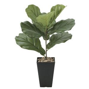 人工観葉植物 光触媒 観葉植物 フェイクグリーン ミニ インテリア イミテーショングリーン インテリアグリーン モダン グリーン おしゃれ 母の日 花 高さ50cm ギフト カシワバゴム 鉢植え 人
