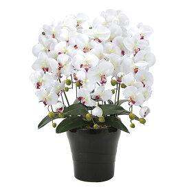 胡蝶蘭 光触媒 インテリア 人工観葉植物 造花 ギフト 胡蝶蘭5本立 アートフラワー ホワイト