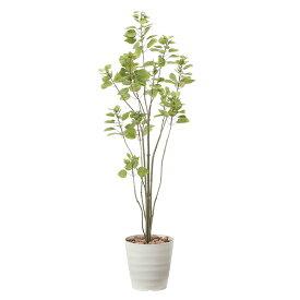 光触媒 観葉植物 植物 グリーン おしゃれ インテリア ブランチツリー 人工観葉植物 高さ170cm