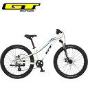 2021 GT キッズ 子供 自転車 ストンパー エース 24 GT STOMPER ACE 24 ホワイト 24インチ