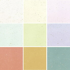 メニュー用紙(越前和紙) A4 1セット10枚入り OA和紙金銀雲竜 OA-41 白・クリーム・ピンク・水・草・藤・レンガ・カラシ・ブルー 全9色