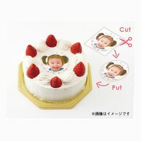 可食プリント 可食シート 食べられる印刷 KSKP-0008 ★