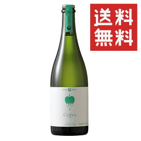 【一本で送料無料】大池ワイナリー ふじシードル ドライ 750ml スパークリングワイン 辛口 日本ワイン 長野 国産