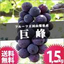 種なし巨峰 1.5kg 送料無料 山梨県 ぶどう 巨峰 山梨産 ブドウ ぶどうばたけ