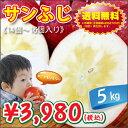 【りんご 5kg 送料無料】【お歳暮】長野県産 サンふじ りんご 5kg (14個から16個入り) お歳暮 / 完熟りんご / 信州り…
