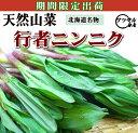 北海道天然もの【行者にんにく】3kg入/ヒトビロ