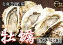 北海道知内産/生牡蠣/L20個/殻付き/生食用(140〜190g目安)