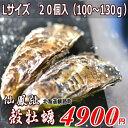 北海道/釧路町仙鳳趾/生牡蠣 L20個/(100〜130g目安)