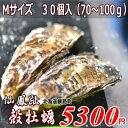 殻付き牡蠣/北海道/釧路町仙鳳趾/生牡蠣 M30個/(70〜100g目安)