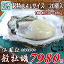 レア3年物/20個/北海道・活牡蠣(カキ)(殻付き 生食)牡蠣・厚岸西岸 仙鳳趾/牡蠣230グラム〜260グラム前後