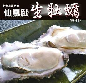 レア3年物/10個/北海道・活牡蠣(カキ)(殻付き 生食)牡蠣・厚岸西岸 仙鳳趾/牡蛎230グラム〜280グラム 殿牡蠣