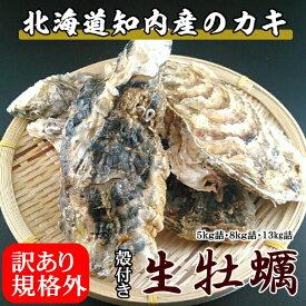 訳あり規格外牡蠣【5kg詰】/北海道/知内町/生牡蠣/殻付き/生食用