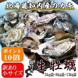 訳あり規格外(小サイズ)牡蠣【5kg詰】/北海道/知内町/生牡蠣/殻付き/生食