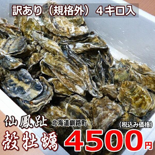 牡蠣70個前後/訳あり/ハネ/北海道/釧路町仙鳳趾/生牡蠣 4キロ 姫牡蠣 商標登録 第6077570号
