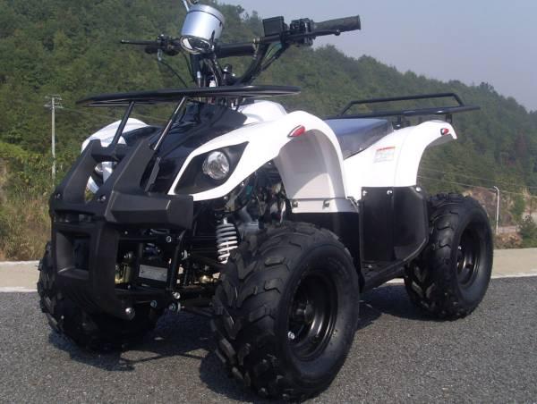 四輪セミバギー 公道走行可能 50cc HL50BW