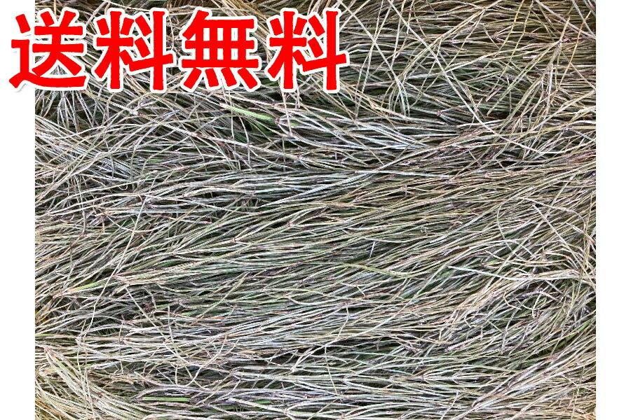 【送料無料】平型ヒューズホルダー赤15A/07-0247/Toyota/Honda/Nissan/Mazda/Daihatsu/